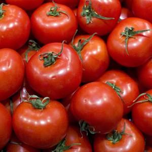 c te d 39 ivoire prix d 39 un kilo de tomates en 2018 combien. Black Bedroom Furniture Sets. Home Design Ideas