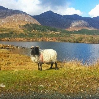 Irlande (Éire)